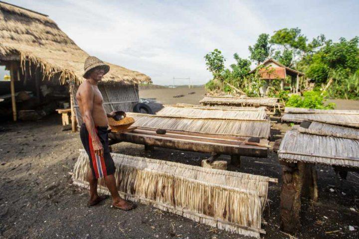 Balio Harmonija